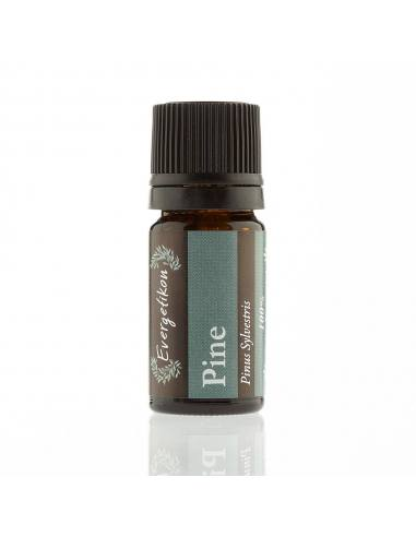 Evergetikon Essential oil Pine 5ml